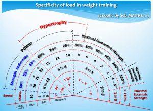 force-hypertrophie-répétitions-charge-maximale-