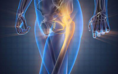 L'amélioration de la mobilité des hanches (II)