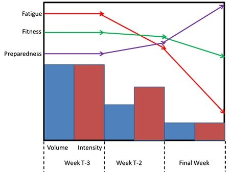 paradigme-fatigue-fitness-peaking-powerliftingmag