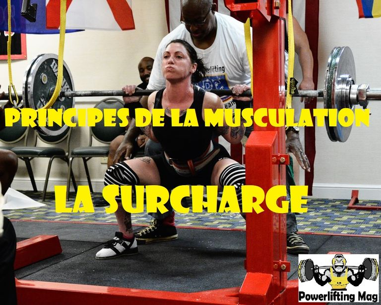 Principes de musculation : le principe de surcharge (II)